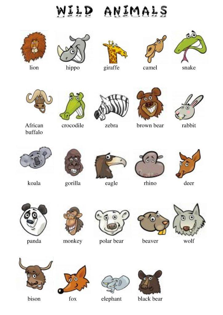 Wilde Tiere im Englischen